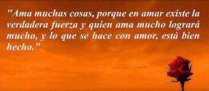 Amor-0