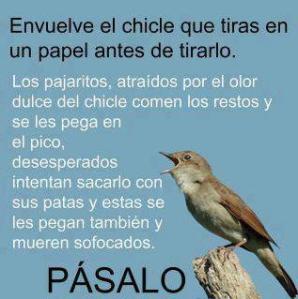 Chicle