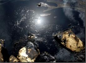 Derrame de petroleo