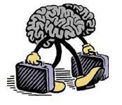 Cerebro simpatico