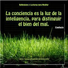 Conciencia-8