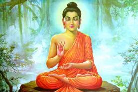 Buda-8