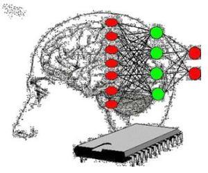 Cerebro y máquina