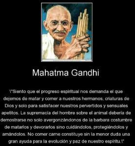 Progreso-6