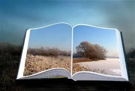 Libro-8