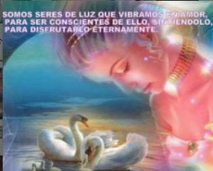 S. de Luz-15