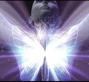 Somos luz